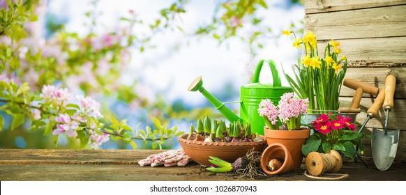 Gartenwerkzeuge und Frühlingsblumen auf der Terrasse im Garten