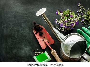 Gardening tools: watering can, flowers, gloves, spade, soil and seeds on black chalkboard background. Spring in the garden concept layout with free text space.