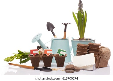 Gardening tools, watering can, peat tablets and pots, seeds, young seedlings and blank business card on a white background. Concept of spring gardening.