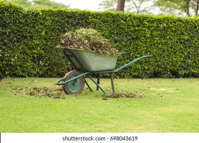 Gardening Tools - Wheelbarrow filled with leaves on green grass lawn in a farm garden
