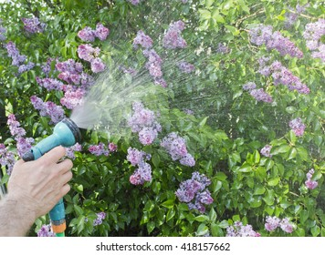 Gardening and watering plants