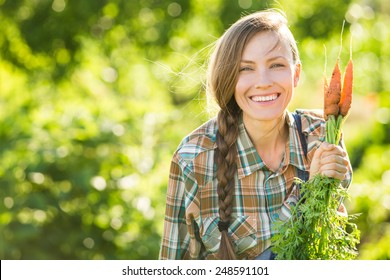 Gardening - Woman with organic carrots in a vegetable garden. backlight, copy space