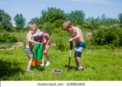 Gardening in the yard