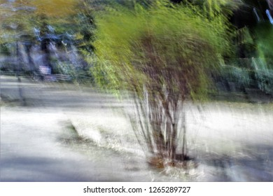 gardens in Autumn, Tribute to Monet, impressionist photograph of the Park of the Roman circus, Toledo, Spain,  photographic sweeps at low shutter speed, feeling of movement, of life,