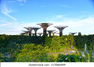 Gardens By The Bay The Landmark of Singapore