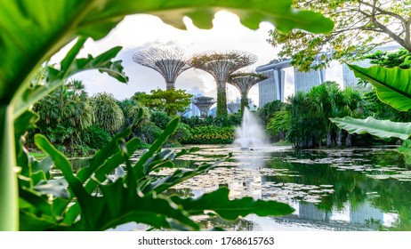 Gardens by the Bay and Marina Bay Sands hotel , Singapore 3/2/2019