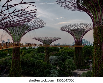 Gardens by the Bay, Singapore, July 17, 2019. Popular tourist attraction and prominent landmark in Singapore, South East Asia.