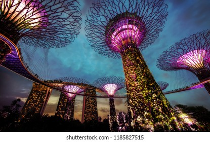 Gardens by the Bay Singapore taken in 2015