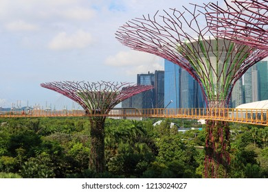 Gardens by the Bay/Singapore - 20 Oct 2018: Tourists walking on the OCBC Skyway in the Gardens by the Bay, a suspension bridge at  treetop of  super tree grove