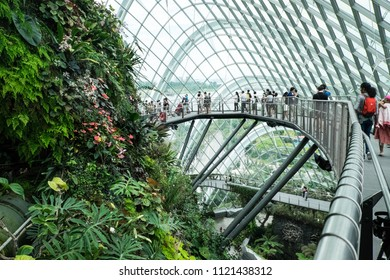 Gardens By The Bay/Singapore: 23rd June 2018- Every year Gardens By The Bay attract thousands of tourist from all over the world.  It showcase the best of tropical horticulture and garden artistry.