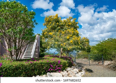 Gardens of the Caribbean on the island of Curacao