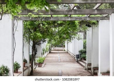 Gardens of Laribal in Montjuic park,Barcelona.Spain.