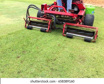 Gardner on ride-on lawn mower cutting grass in golf course