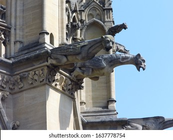 Gargoyles at the Gothic cathedral of Metz (France)
