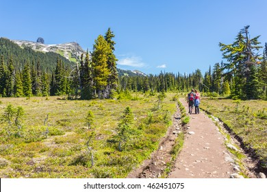 Garibaldi provincial park. Alpine meadows with wild flowers, mountain lakes with crystal clear water on a sunny day. British Columbia, Canada. Hikers on the trail.
