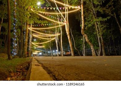 garlands of lights-night Park