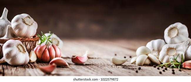 Garlic banner. Garlic bulbs on wooden rustic table in panorama shape. A pile of garlic peeled cloves.