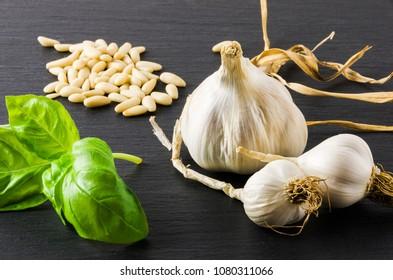 Garlic, basil, pine nuts, on gray stone background.