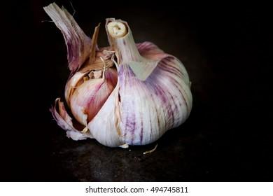 Garlic in black background