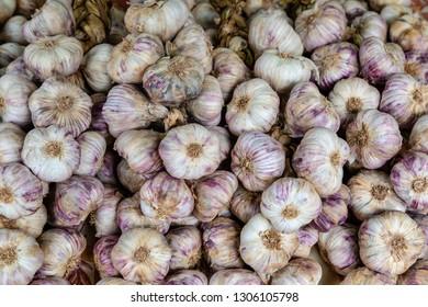 Garlic bulbs - red and purple garlic bu