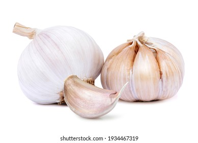 Garlic clove and bulb isolated on white background.