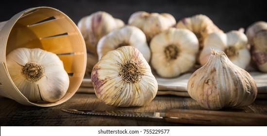 Garlic Cloves and Garlic Bulb on vintage wood background
