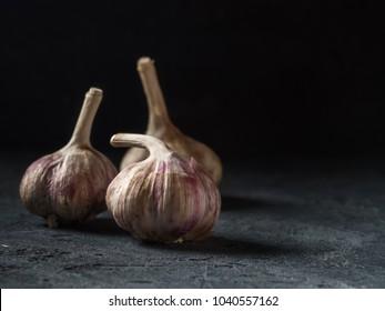 Garlic fresh Food Still Life toned low key