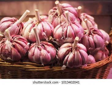 Garlic. Fresh garlic. Red garlic.  Garlic bulbs in vintage wooden bowl.