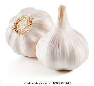 Garlic Isolated on white background Clipping Path