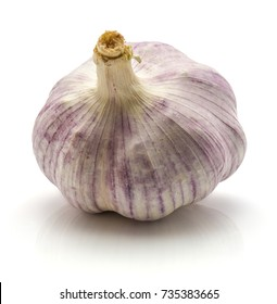 Garlic isolated on white background one whole bulb