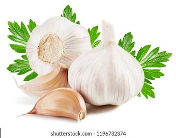 Garlic with leaf. Garlic isolated on white background