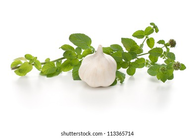 Garlic and mint isolated on white background