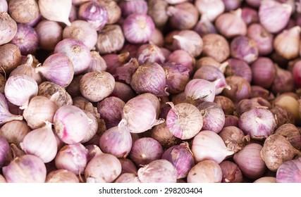 Garlic on the basket