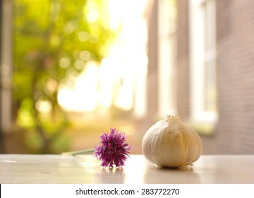 garlic with purple flower in nature soft background
