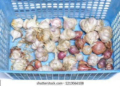 Garlic and red onion in plastic basket.