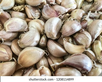 Garlic is a species in the onion genus. It was known to ancient Egyptians, and has been used both as a food flavoring and as a traditional medicine.
