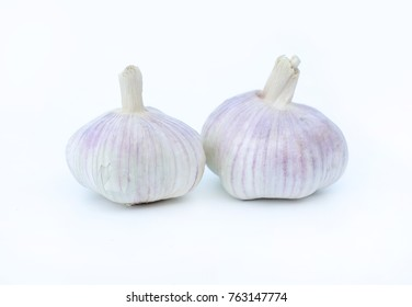 Garlics isolated on white background
