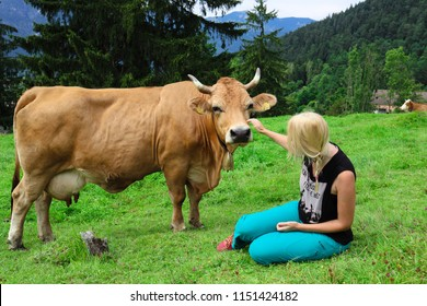Garmisch-Partenkirchen, Bayern, Germany - July 30, 2018: A young woman pets a friendly dairy cow on a meadow in the Bavarian Alps.