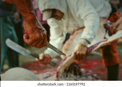 Garut, Indonesia - August 22 2018: Slaughterhouse group when slaughtering animals Qurban Idul Adha 1439 H.