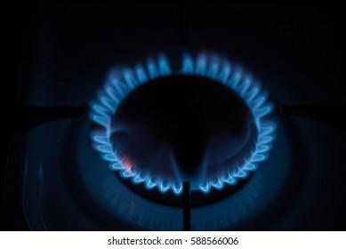 gas burner. burning natural gas