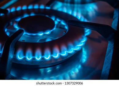 The gas burns in the burner of a kitchen stove