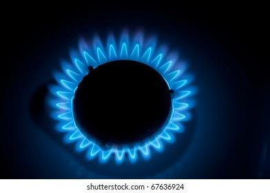 gas burns on the stove
