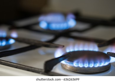 Gas burns in the stove