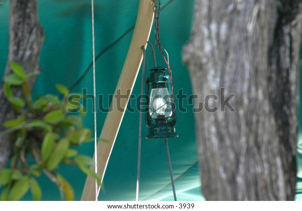 gas lantern hangs from a branch