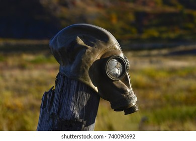 Gas mask on the pole in autumn