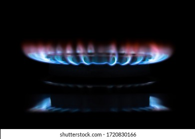 Gas stove burning in the kitchen, blue flames isolated on black background