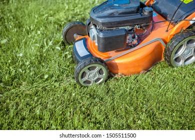 Gasoline lawn mower cutting grass, close-up. Backyard care concept