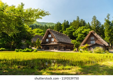 Gasso houses in Shirakawa-go, Japan