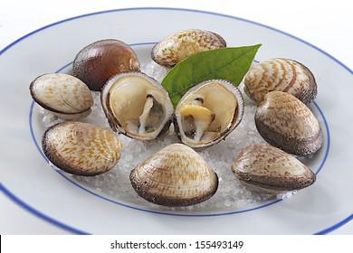 Gastronomy food -seafood platter
