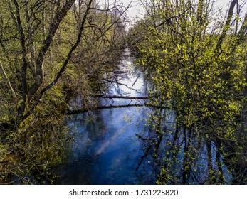 Gatchina Park Izora River near Pudost